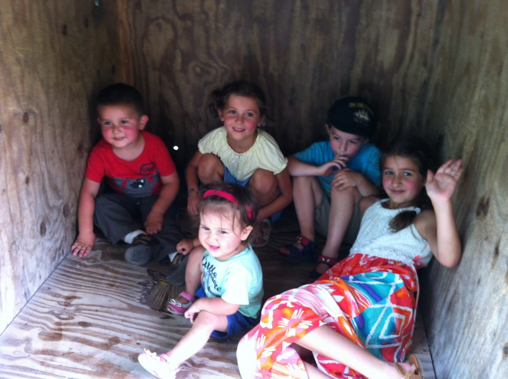 Kids in a box at the zoo.