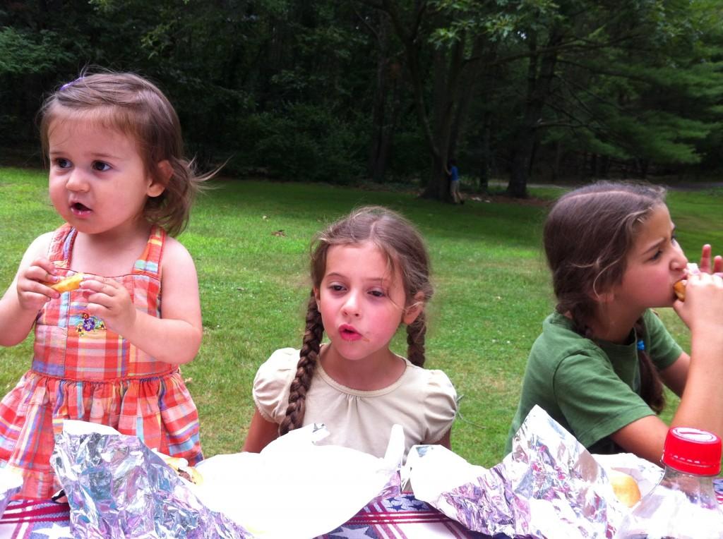 Picnic at Wampatuck State Park: three sisters