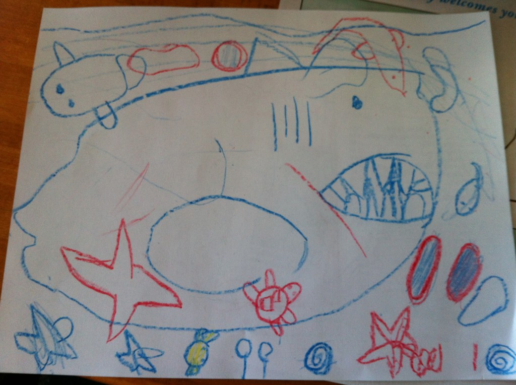 Sophie's shark and other marine life