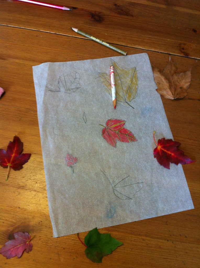 Bella's leaf tracing