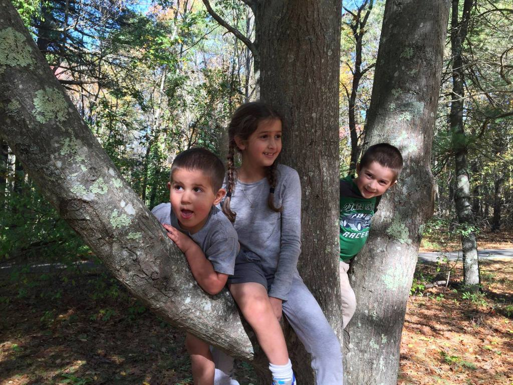 Bella Ben and Anthony in a tree