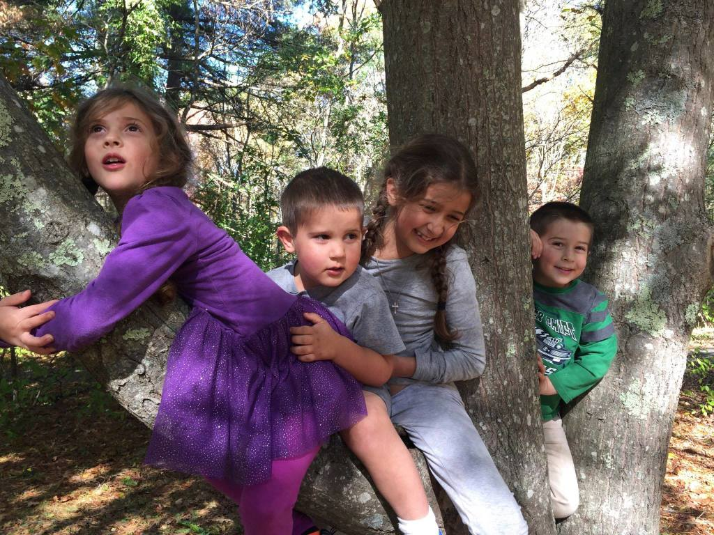 four kids in a tree