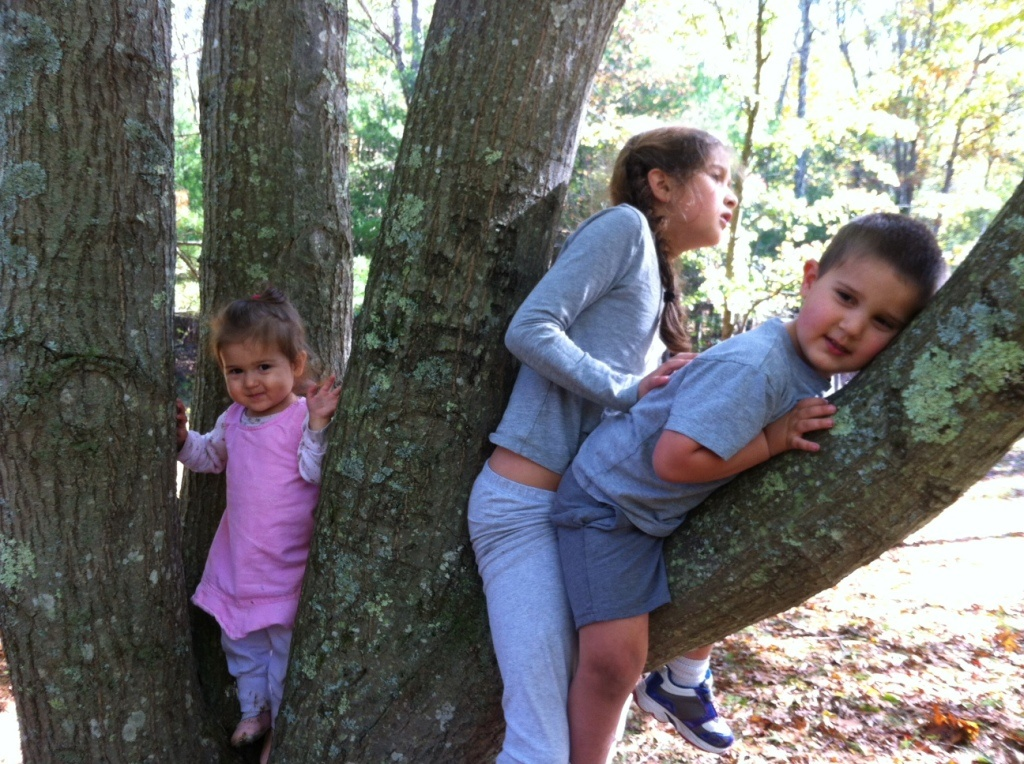 three kids in a tree
