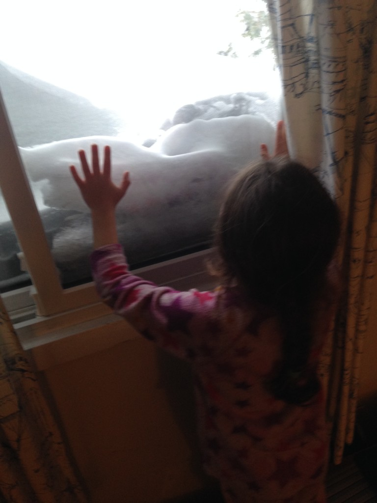 Sophie marvels at the snow that almost covers the office window.