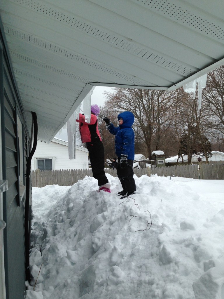 Bella and Ben watch Uncle John and the cousins shovel snow off the roof.