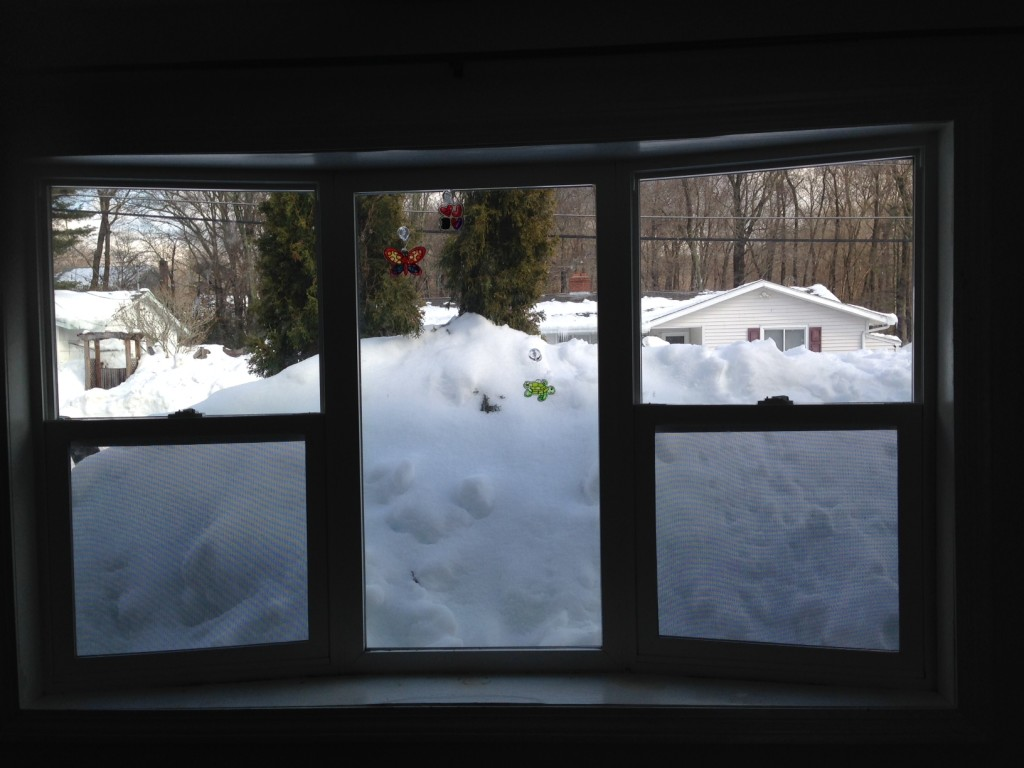 The view out my front window today after we cleared all the snow off the roof. Now I can't see the street at all.