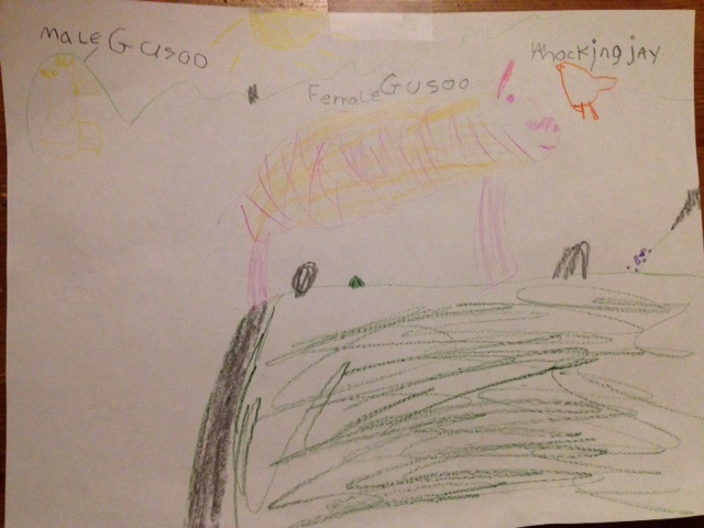 Bella's drawing of male and female guzoos and a mocking jay.