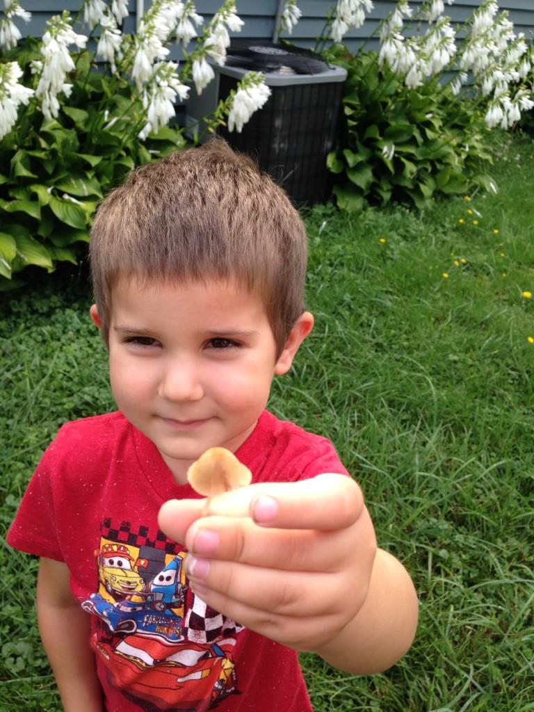 Anthony found a mushroom.