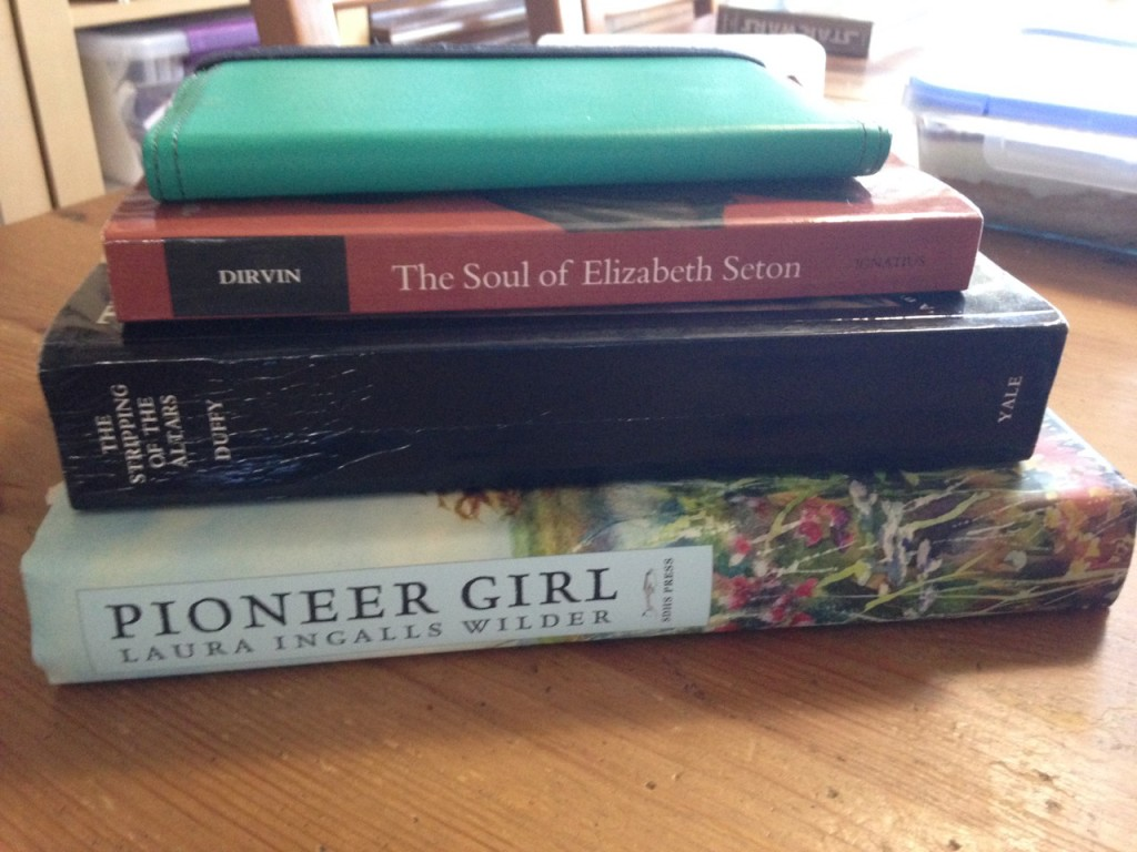 A few books missing from the pile, like Trianon and Sun Slower, Sun Faster, but most of what I read this month was on the Kindle.