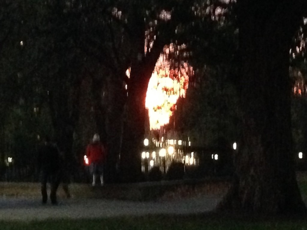 View of the sunset on Boston Common, Bella in the red coat. The real thing was a really deep orange.