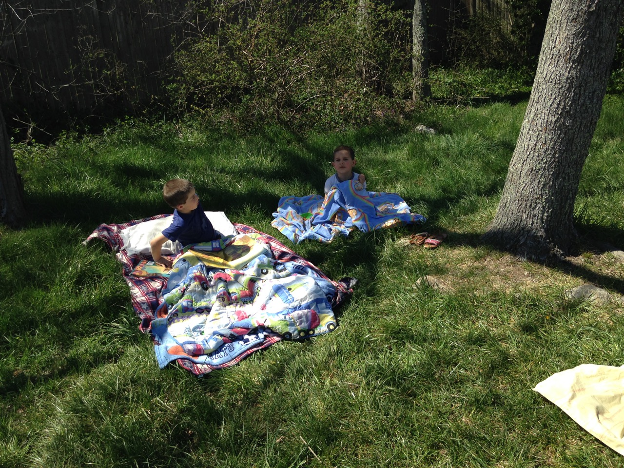 The boys camp out under the trees.