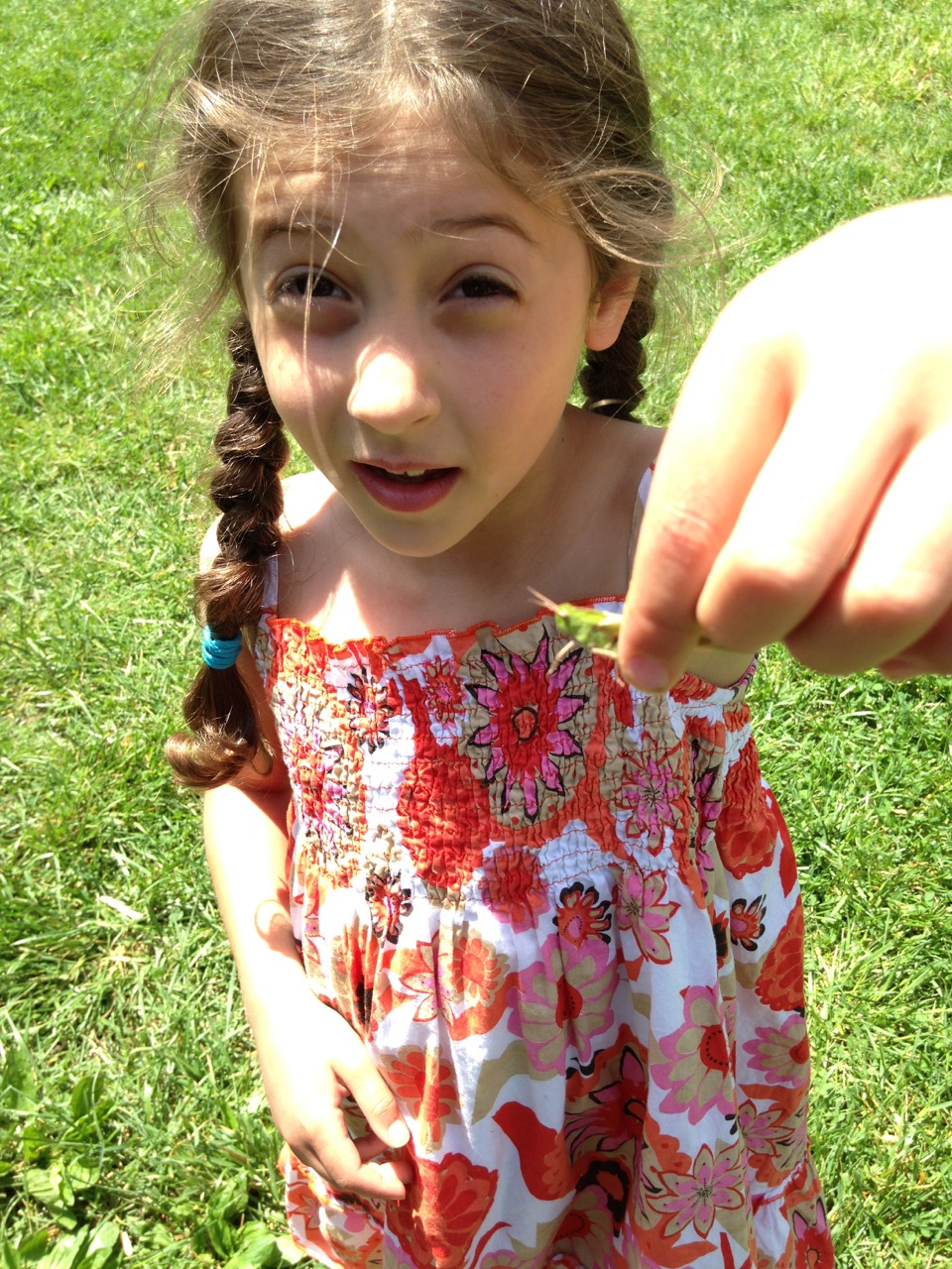 Sophie caught a grasshopper. We put him in a jar and watched him for a bit.