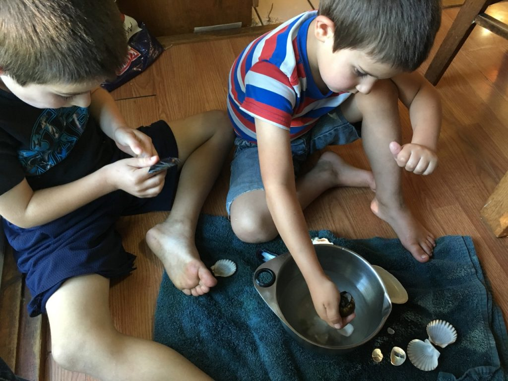 The boys play with shells and water.